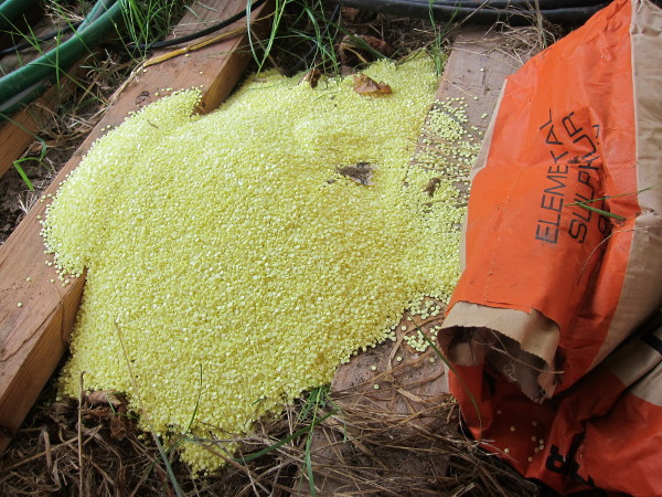 Sulfur bag ripped open by a rodent
